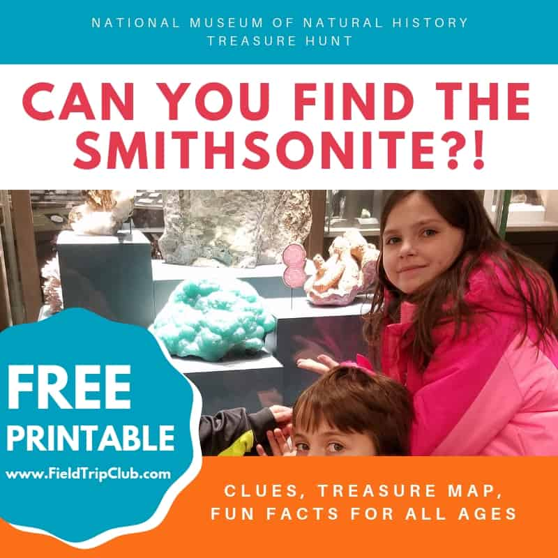 Free Printable for a Treasure Hunt to find the Smithsonite at National Museum of Natural History in Washington, DC.